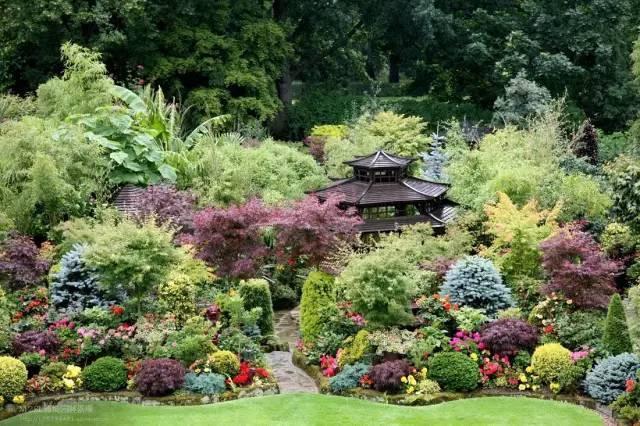 不懂这些植物色彩,再美的景也能看抑郁了!