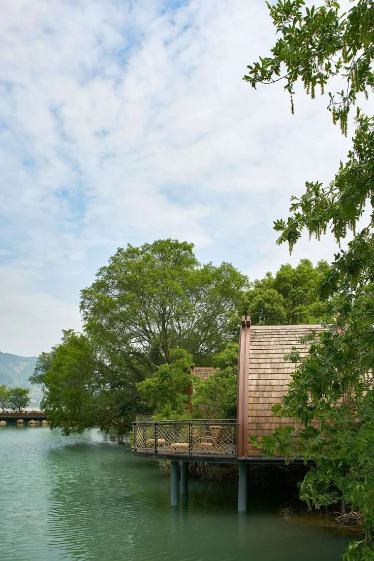 这些树屋,满足你对森林的所有幻想-1527151761789124.jpg