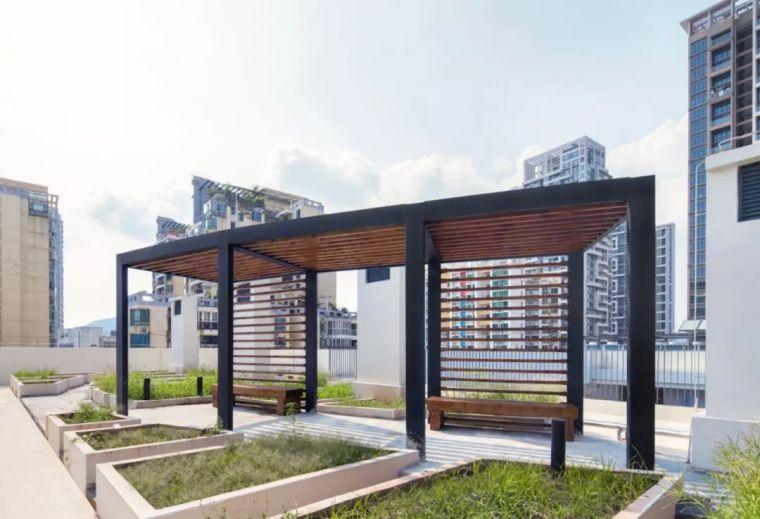 深圳海岸小学—校园景观设计_27