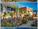 美国加利福尼亚的莫哈韦沙漠的旧房改造