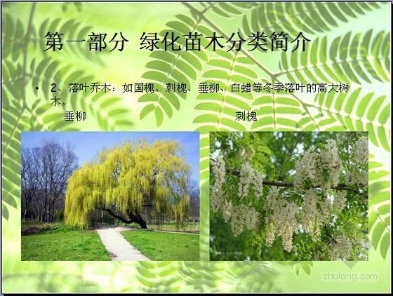 [预算入门]园林绿化景观工程基础知识