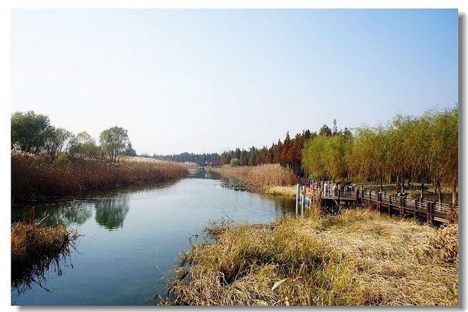 湿地公园景观设计要点_10