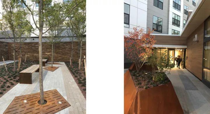 树池的配置方法和设计形式_38