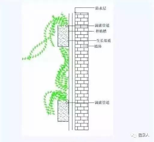垂直绿化·会呼吸的墙壁_13
