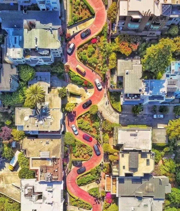 海外|这是公路还是城市花园?
