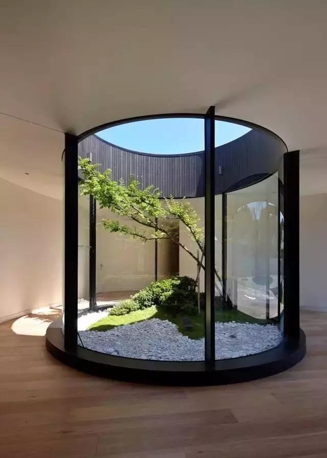 景观做得好丨给树让让路-640.webp (51).jpg
