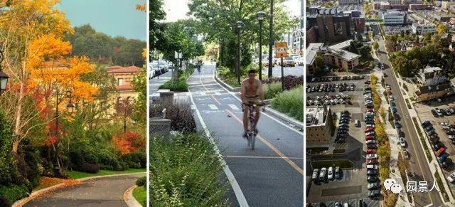 城市干道植物配置,实用干货不得不看