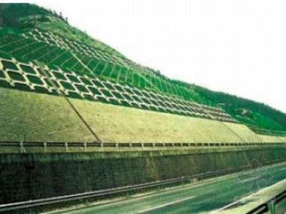 道路工程路基边坡绿化防护施工工艺