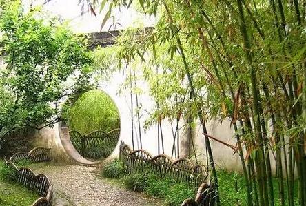 干货|园林植物季相变化景观特征