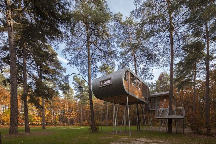 当房子遇上树,这群设计师要上天_8