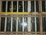 模板工程质量管理处罚细则