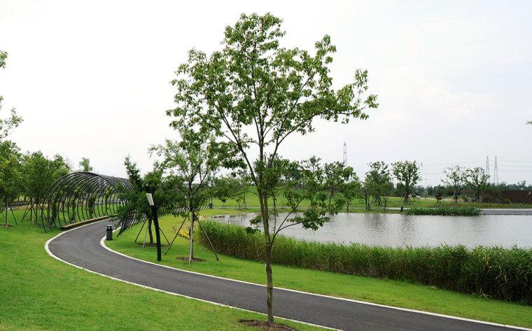 上海辰山植物园-12