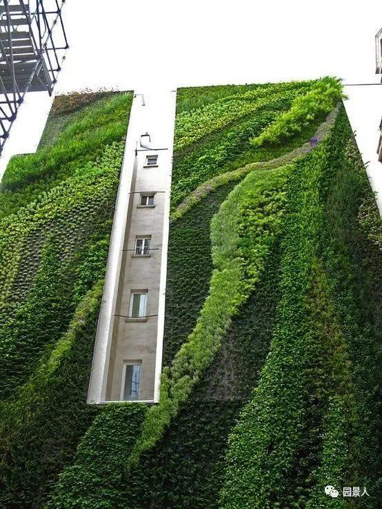 垂直绿化·会呼吸的墙壁_40