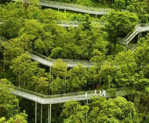 新加坡经典高端景观考察活动_98