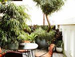 如何用植物装点你的园林景观!