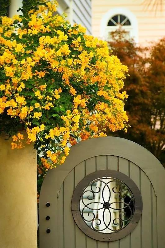 50款·漂亮的庭院入口_43
