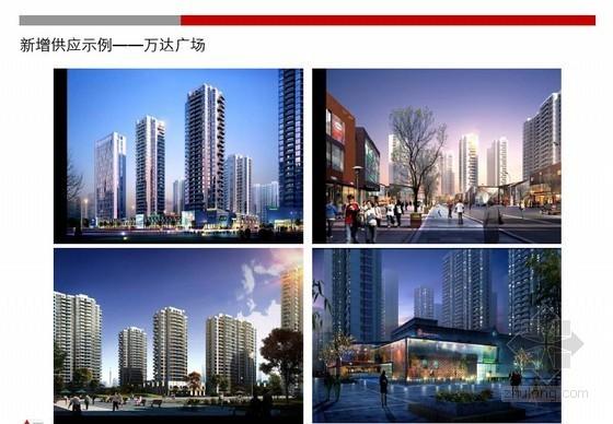 [济南]标杆地产豪宅项目市场调研报告