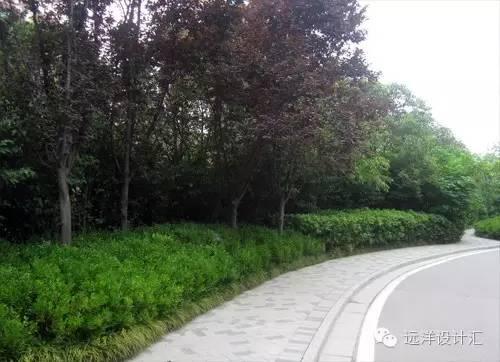 一个会种树的设计师,住宅每平方溢价3000元_38