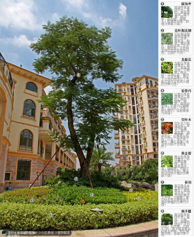 104组精彩植物配置案例(实景效果+植物品种)_78