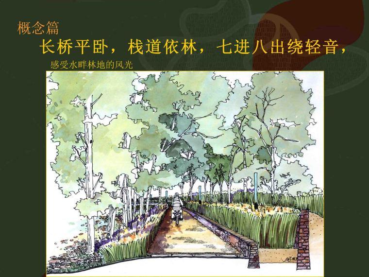 [河北]秦皇岛市汤河两岸带状公园景观规划设计