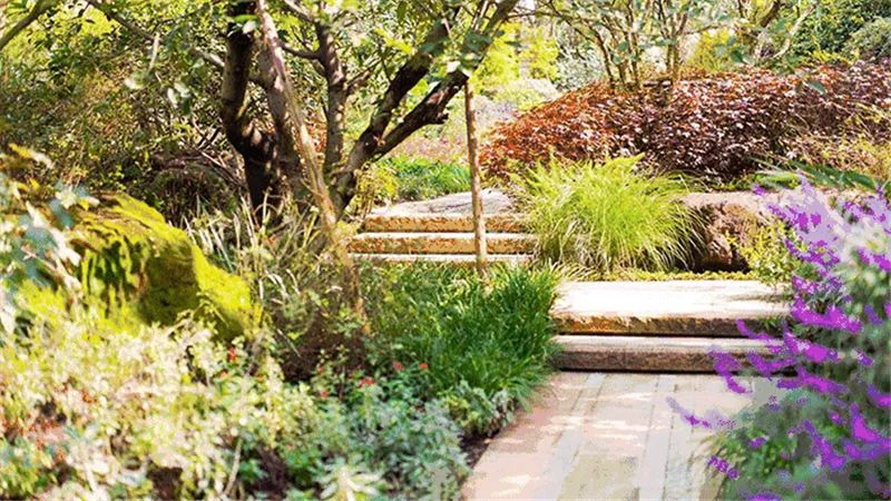 植物造景·实用景观设计来一波_8