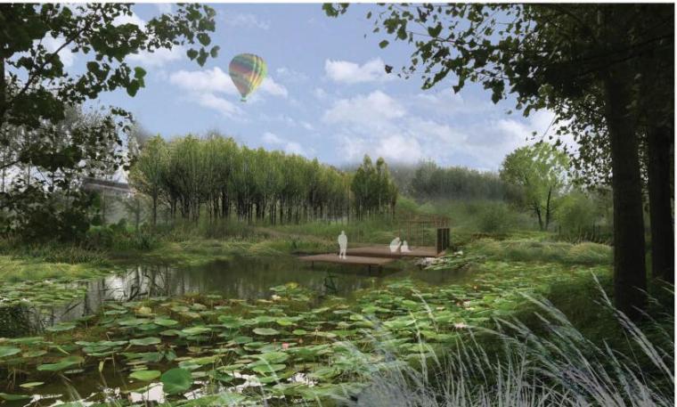 [山东]济宁微山湖湿地公园田园区景观方案深化设计