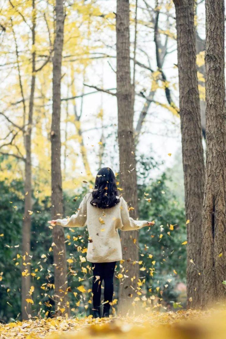 中国最美红叶观赏指南,错过再等一年_12
