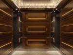 精致电梯厢3D模型下载