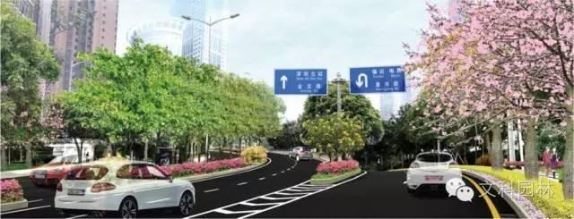 城市道路的植物配置设计原则-004.jpg