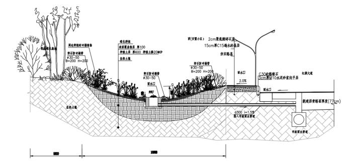 道路景观绿化及排水施工方案