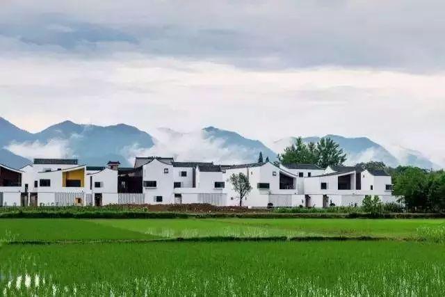 吴冠中画里的旧时江南,在这个小村落复原了…