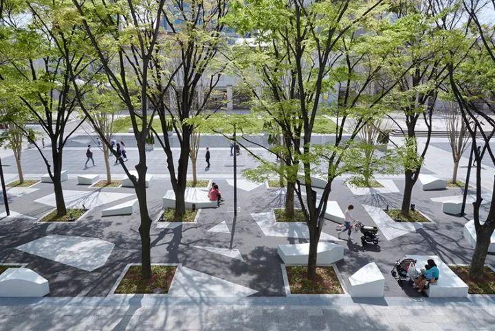 树池的配置方法和设计形式_51