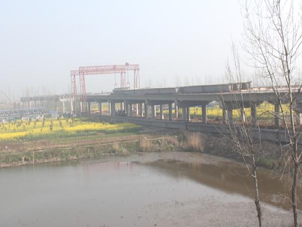 淮南淮上淮河公路大桥工程施工情况汇报