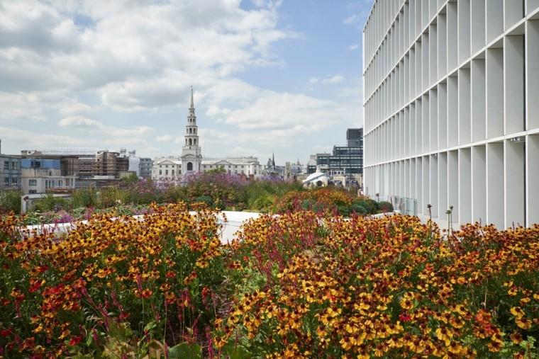 NewLudgate地块街道空间及屋顶花园