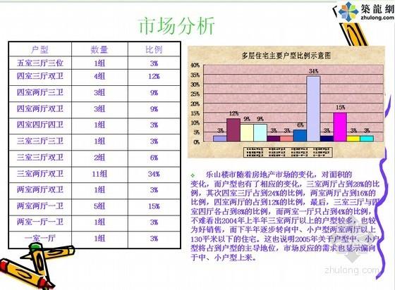[四川]公寓住宅项目营销策划案例分析(图文并茂