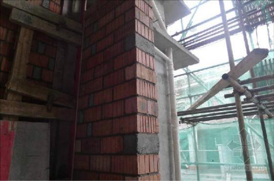 建筑工程主体结构施工质量亮点照片