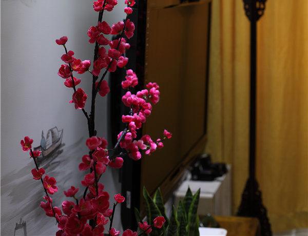 中式古典简约家居装修效果图_13