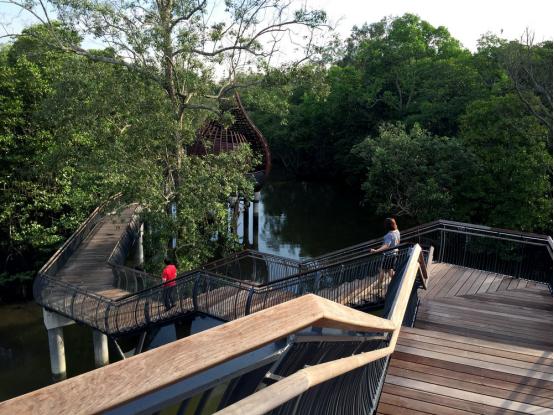 案例分享|新加坡双溪布洛湿地公园景观设计_3