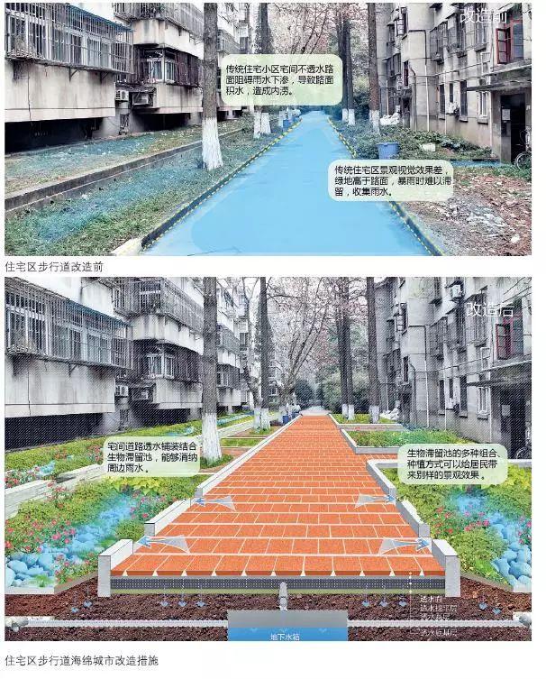 24种海绵城市设计措施全图解!_6