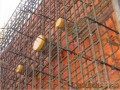 建筑工程安装预埋预留工程施工技术及案例分析(110页 附图较多)
