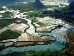 庙岗乡:抗旱在行动,水利惠民生