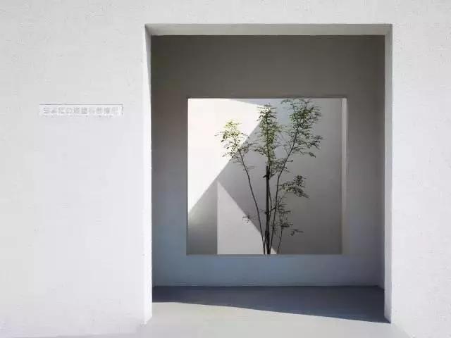 景观做得好丨给树让让路-640.webp (50).jpg