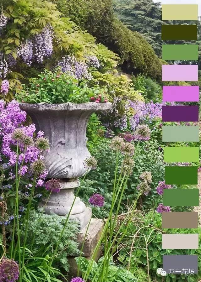 教你如何进行花境中的色彩配置-004.jpg