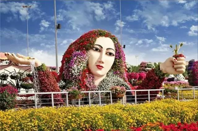 迪拜的花卉展览,全世界规模最大!你肯定没看过!_9