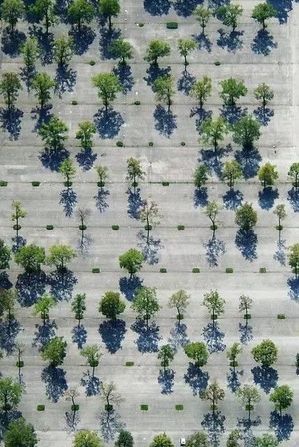 停车场也玩生态_9