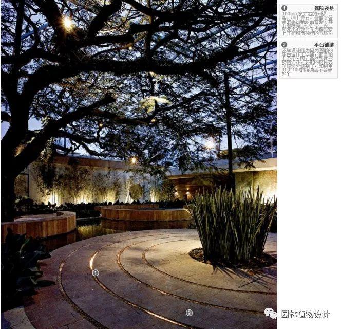 104组精彩植物配置案例(实景效果+植物品种)_42
