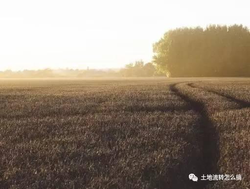 【重磅】土地流转问题排行榜及详解!_6