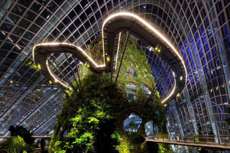 新加坡世界级超级温室花园-13