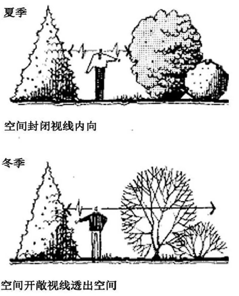 植物造景·实用景观设计来一波_15
