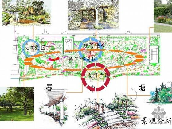 某道路绿化带环境景观设计